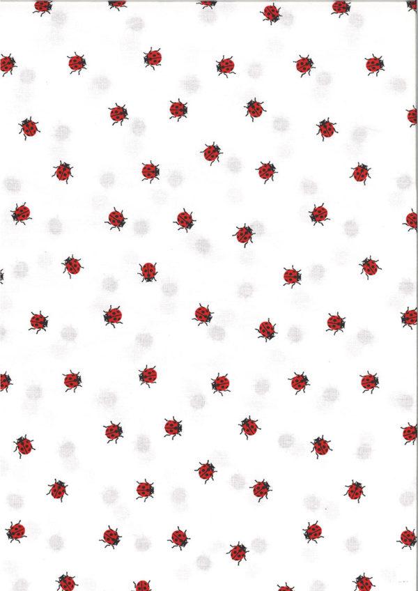 ql-kc-0339-315-coton